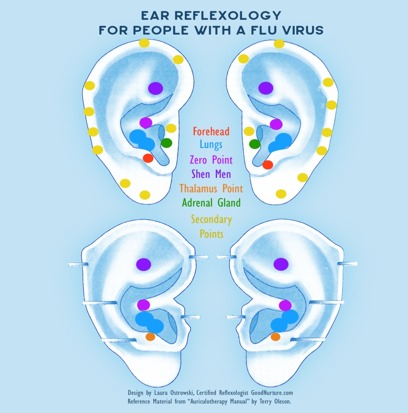 Ear-Reflexology-For-Flu-Virus-GoodNurture-IG2