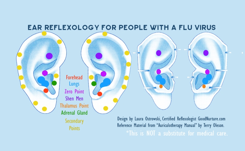 Ear-Reflexology-For-Flu-Virus-GoodNurture-Tweet